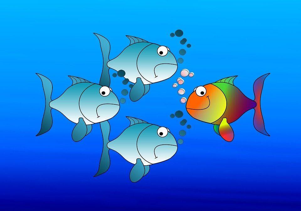Lettera alle sardine sull'8 marzo